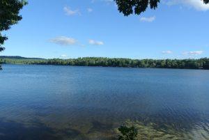 Lake LBJ Waterfront Homes